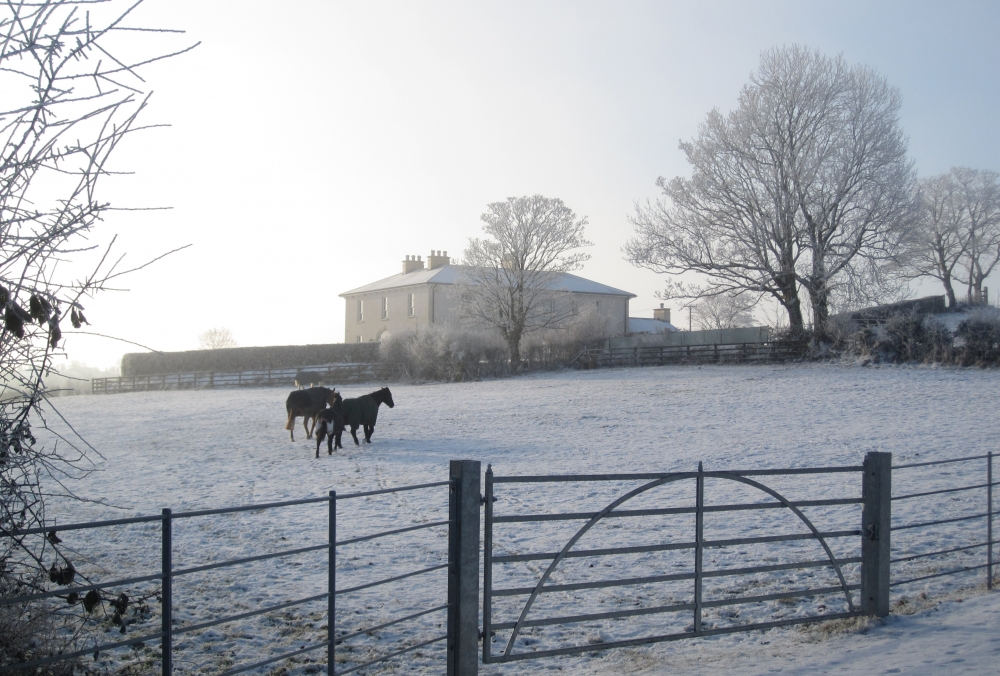 A frosty morning at this Neo-Georgian country house set in an idyllic Irish landscape